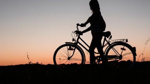 Ervaar Flevoland op de fiets