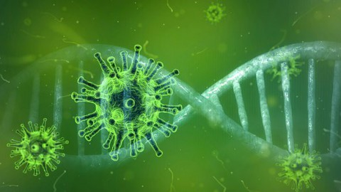 Twee nieuwe sterfgevallen door coronavirus