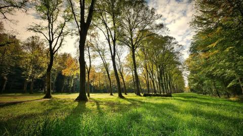 Kunstroute Natuurpark wil dit jaar 'Overbruggen'