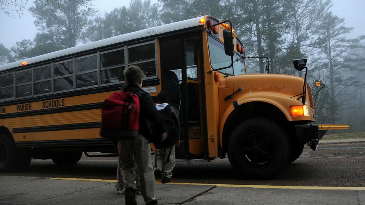 Lelystad akkoord met bedrijf Witteveen over schoolbusjes