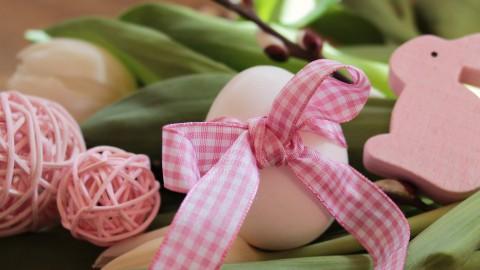Het roze ei vinden in Lelystad